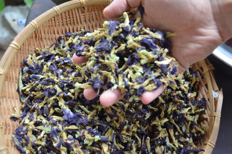 The plant materials that make up the Zen Kodo mat.